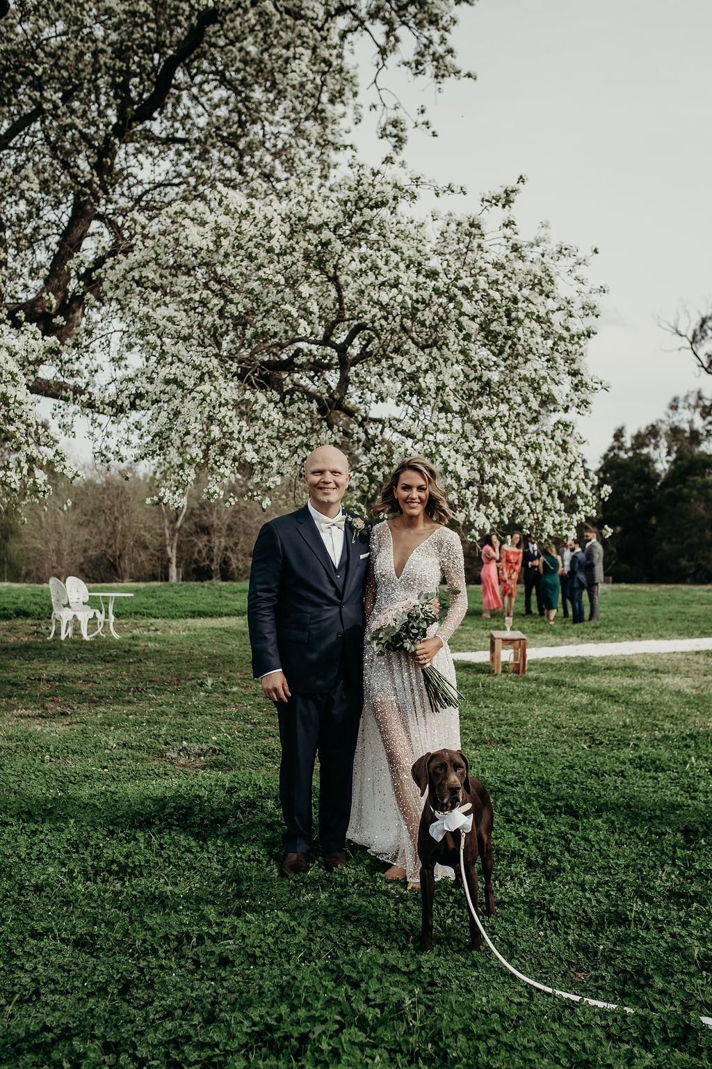 muse photography venue bridal gowns rm williams harpist makeup florals celebrant weddings