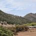 Localizan a dos ejecutados en carretera San Juanito- Basaseachi