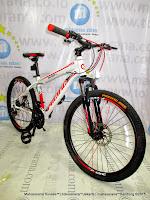 24 Inch Pacific Invert-LX 21 Speed Junior Mountain Bike