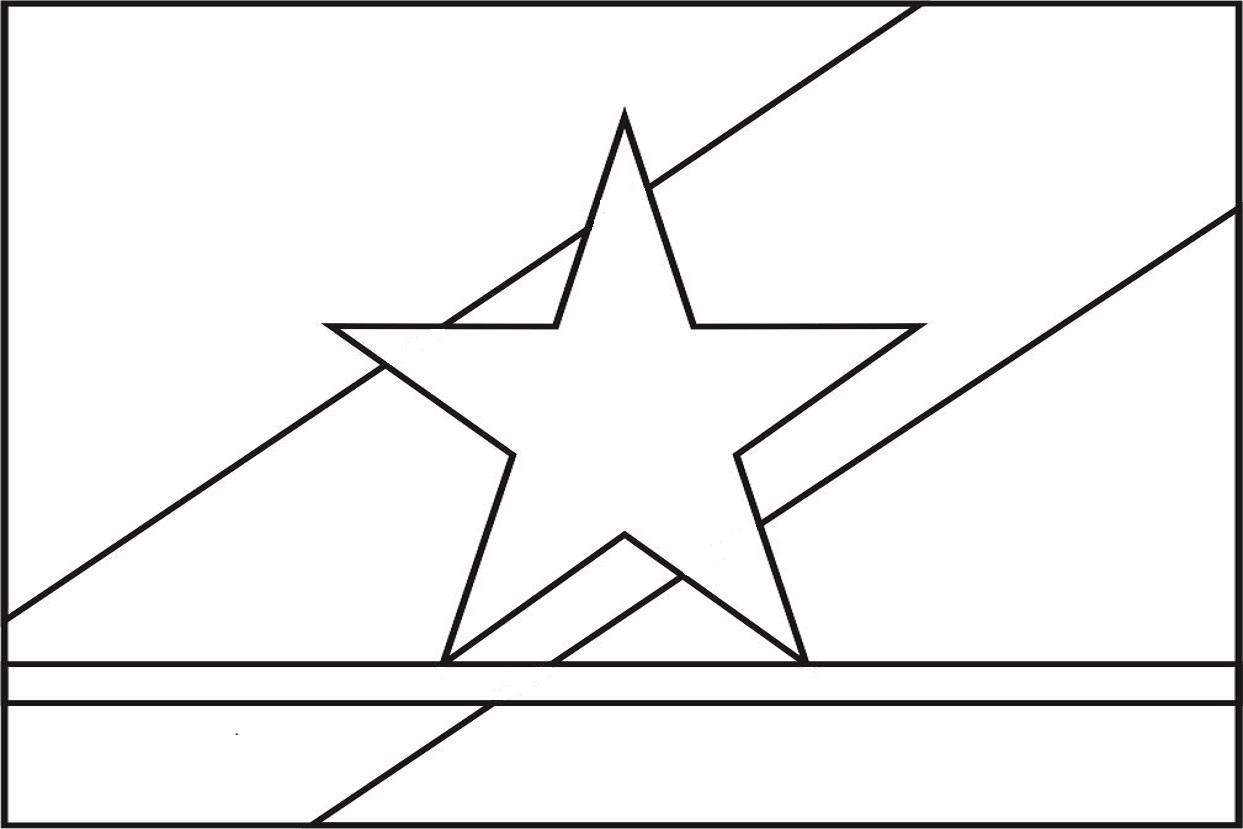 Bandeira do estado de Roraima para colorir