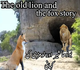 old-lion-and-fox-story