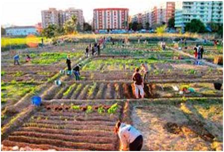 Geopolítica de la revolución verde urbana