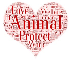 Who Initiated Federal Law About Emotional Support Animals?