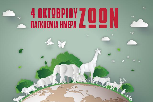 Παγκόσμια ημέρα ζώων: Η σχέση μας με τα ζώα είναι υπόθεση ηθικής