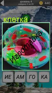 изображение клетки в цвете 4 уровень 600 забавных картинок