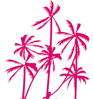 Palm-tree-vector