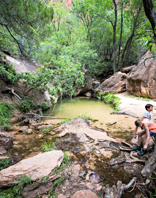 Wanderung zu den Emerald Pools im Zion National Park mit Kindern