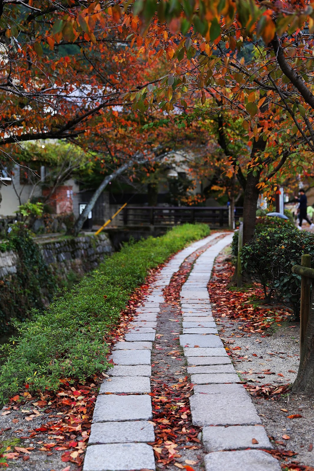The Top 10 Things to See & Do in Kyoto, Japan by Posh, Broke, & Bored