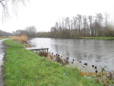 oude Leiearm in Wevelgem
