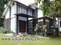 family villa halaman