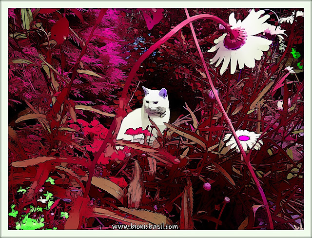 Angel Snowie Deep In The Jungle ©BionicBasil® Caturday Art