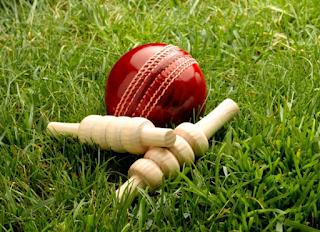 CCSU BA/B.Sc/B.Com 001-Sports and Physical Education Cricket Game File