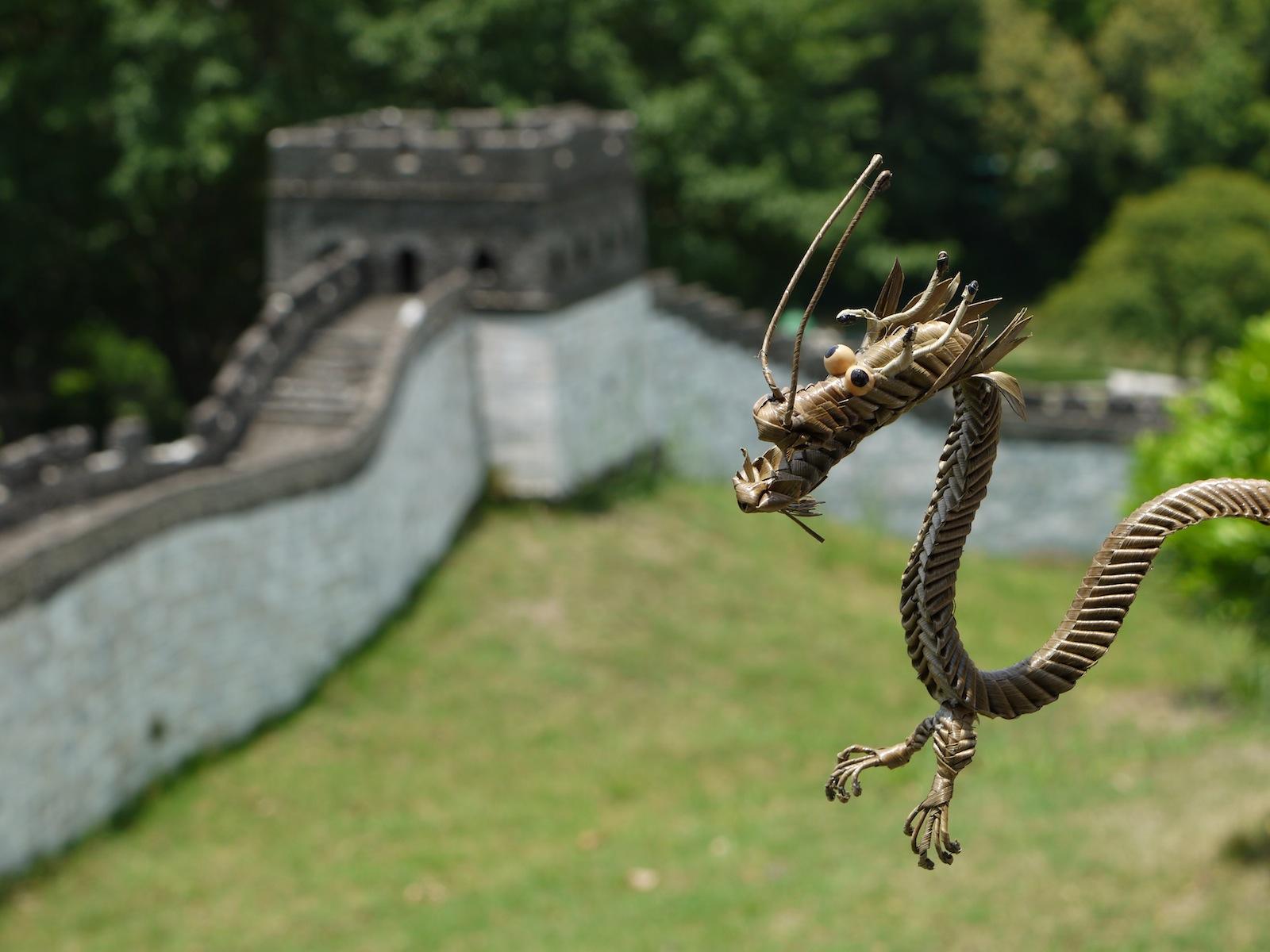 Oikea Lohikäärme