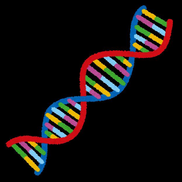 DNAのイラスト | かわいいフリー素材集 いらすとや