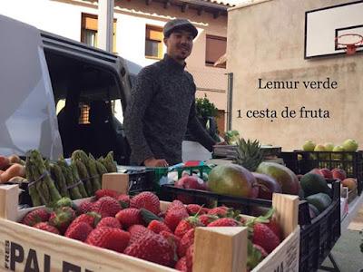 lemur verde, fruta, Beceite, mercadillo,