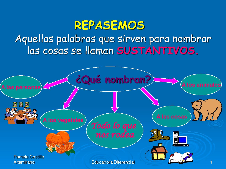 http://constructor.educarex.es/odes/primaria/lyl/Los_sustantivos/