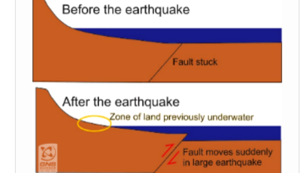 New Zealand Earthquake Was So Strong It Lifted Sea Floor 2 Meters