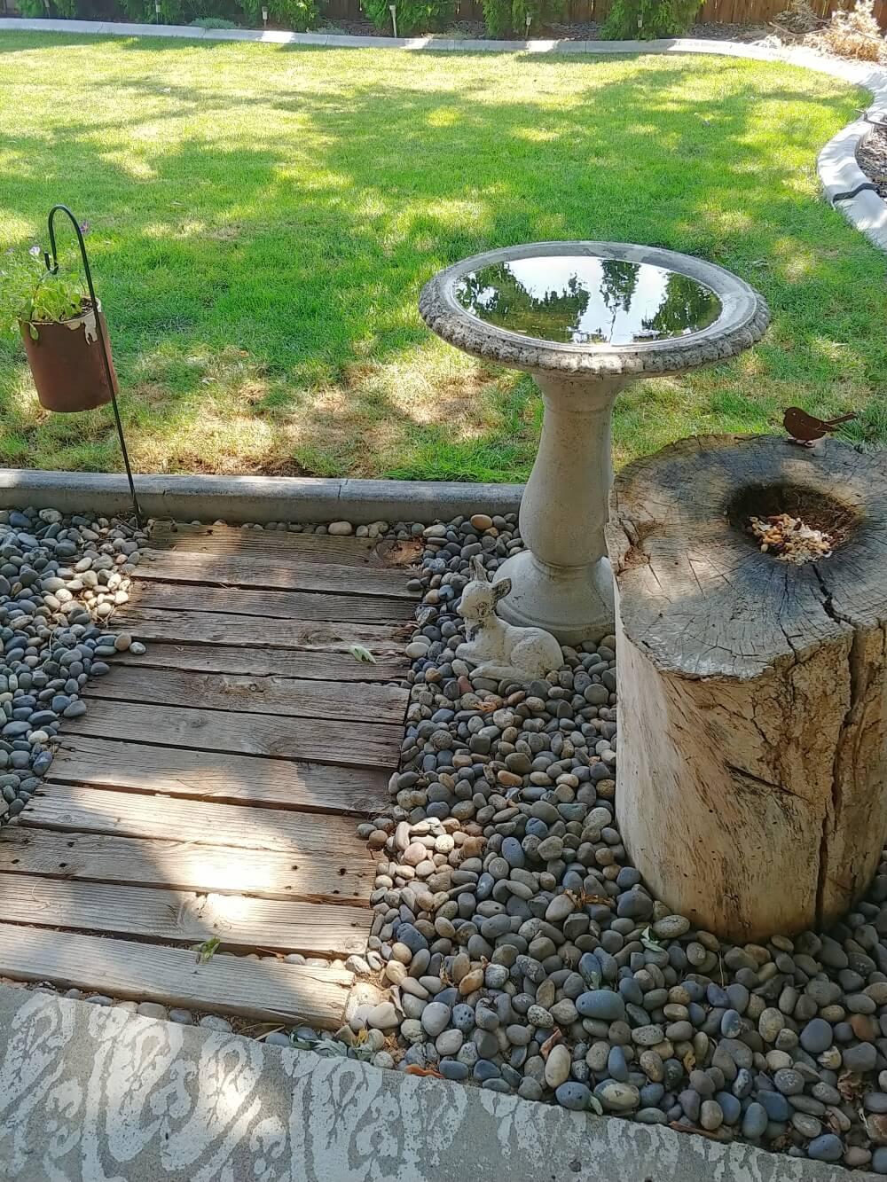 birdbath and bird feeder