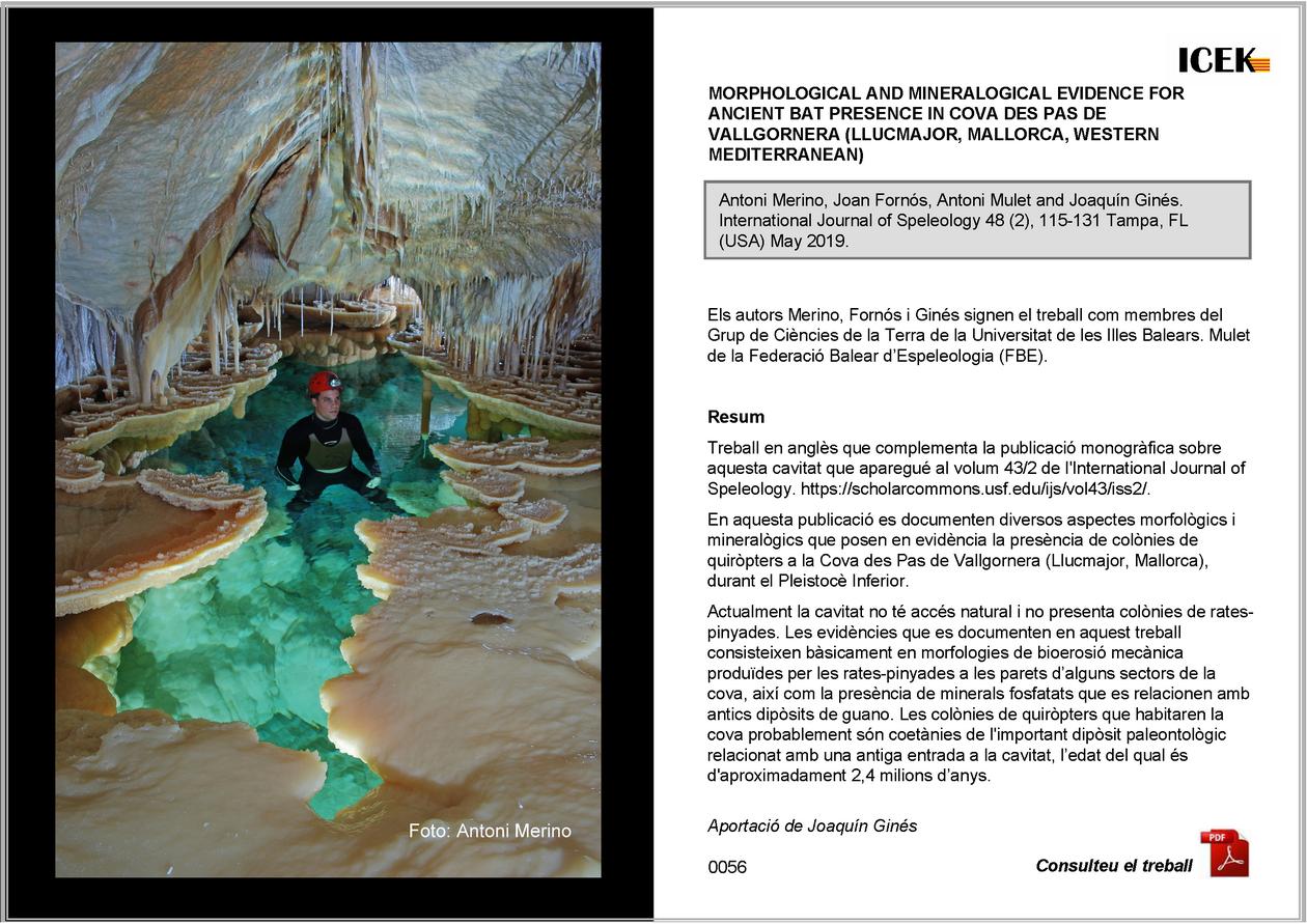 http://www.guimera.info/sarawak/00-ICEK/0056.pdf