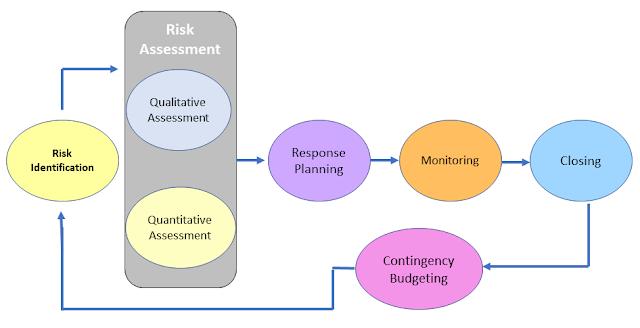 Risk Management Process Steps