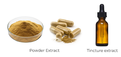 Mushroom Tinctures VS. Powdered Extracts