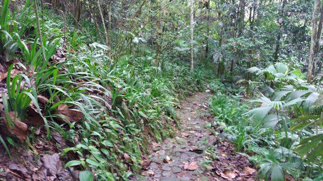 caminatas al sur de colombia
