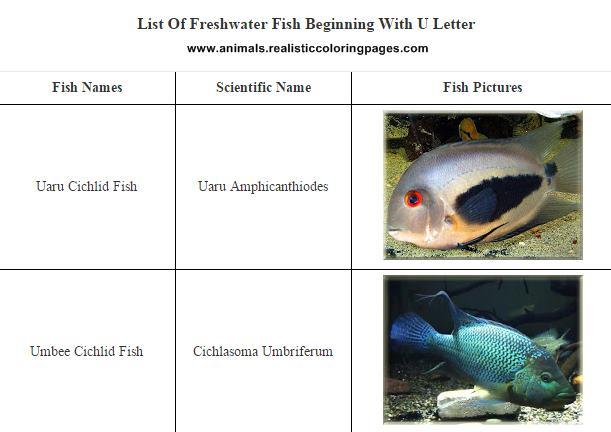 List of freshwater fish beginning with U