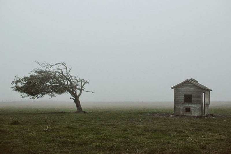 foggy-scenery-photo-16