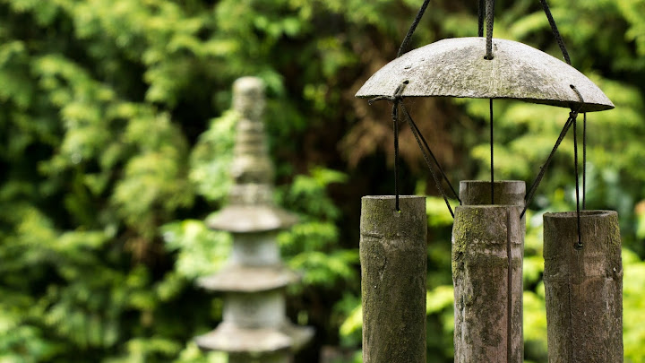 Feng shui y jardín