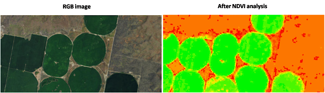NDVI analysis from imagery
