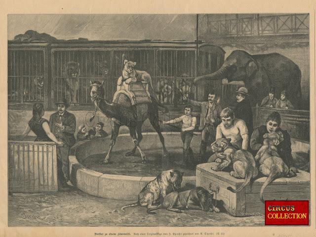 """Gravure provenant """"Das Buch fur alle""""  1895 La scene represente une menagerie foraine avec en fond des roulottes gages,  des tigres, des lions, des ours . A coté se trouve un éléphant et sur la piste un jeune lion sur un dromadaire."""