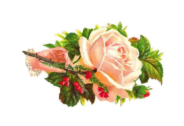 http://1.bp.blogspot.com/-LgVgJAneRHk/UPXQrKI4LrI/AAAAAAAALpk/oOy-s877KfQ/s1600/whtrosewhimsy.jpg