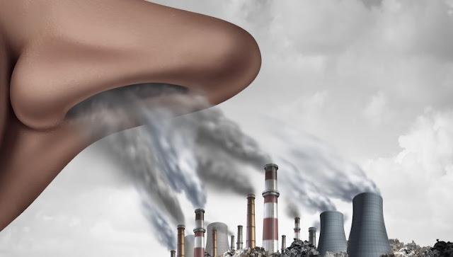 L'inquinamento atmosferico influenza la salute mentale, lo studio mostra