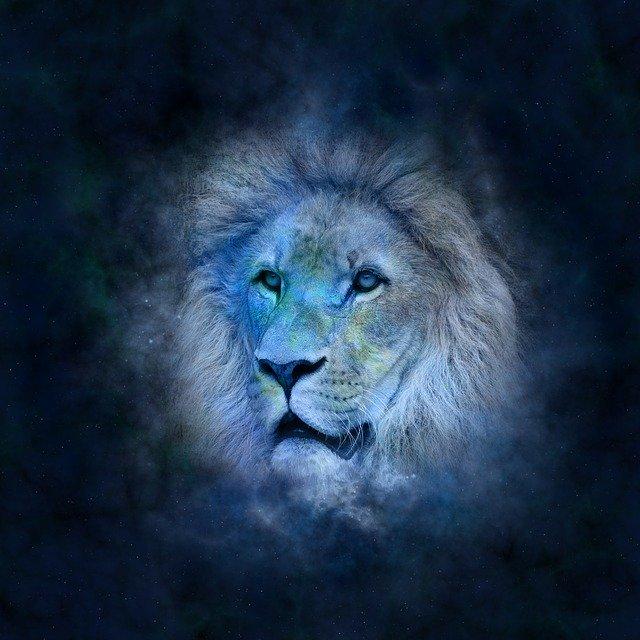 6 Most Feminine Zodiac Signs - Lion