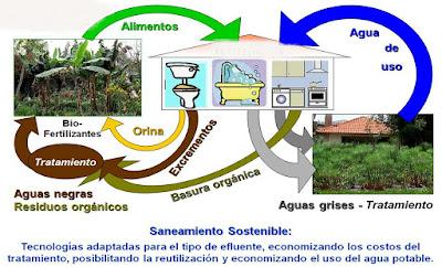 ecologia de los sistemas septicos