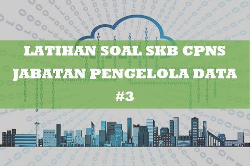 Latihan Soal SKB CPNS Jabatan Pengelola Data 3