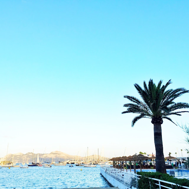 Best Restaurants In Pollensa: Puerto Pollenca, Mallorca - KTMY