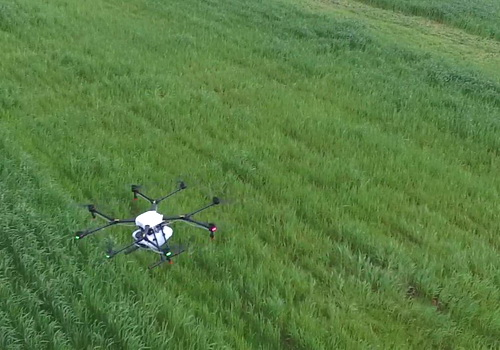 Tinuku DJI builds drone market base in agriculture