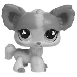LPS Chihuahua Longhair Pets