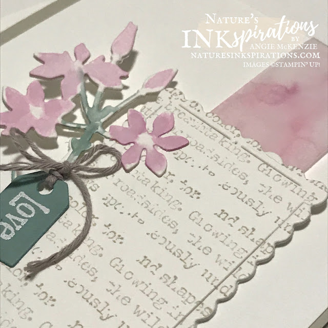 By Angie McKenzie for the Crafty Collaborations Technique Tuesday Blog Hop; Click READ or VISIT to go to my blog for details! Featuring the Quiet Meadows Bundle, the Scalloped Contours Dies and the Welcoming Window Photopolymer Stamp Set from the 2021-2022 Annual Catalog by Stampin' Up!; #birthdaycards #stamping #techniquetuesday #techniquetuesdaybloghop #quietmeadowbundle #quietmeadowstampset #meadowdies #welcomingwindowstampset #watercoloring #coloringwithblends #alcoholinksonvellum #20212022annualcatalog #naturesinkspirations #makingotherssmileonecreationatatime #diecutting #cardtechniques #stampinup #handmadecards #ministampincutandembossmachine #stamparatus