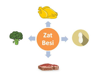 sumber bahan makanan yang mengandung zat besi