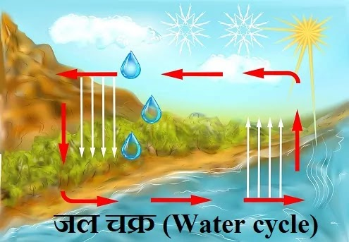 जल चक्र (Water cycle)