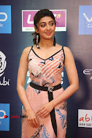 Actress Pranitha Subhash Pos in Short Dress at SIIMA Short Film Awards 2017 .COM 0105.JPG