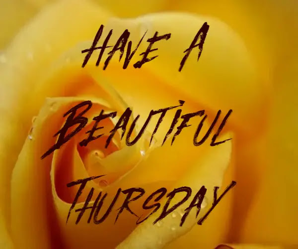 Happy Good Morning Thursday Images ! Wishes on Thursday