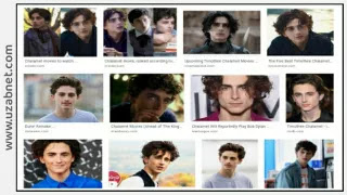 Best Hollywood, Timothée Chalamet Movies