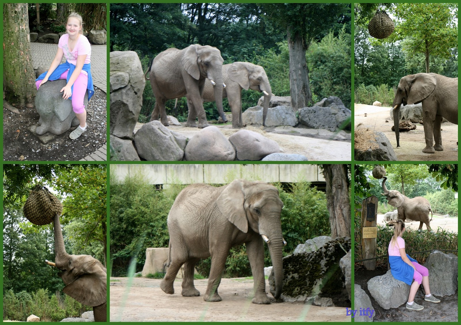 Zoo Duisburg Adresse I Test For You Ausflugtipps Zoo Duisburg Gore Tex Big Days