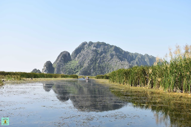 Reserva Natural de Van Long, Ninh Binh