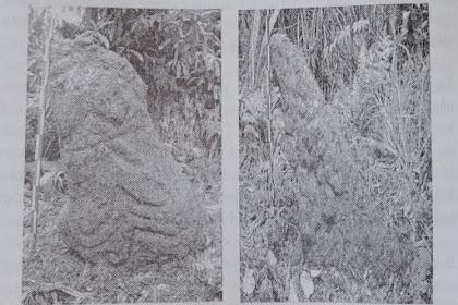 Peninggalan Megalitik Di Puncak Gunung Subang Kuningan Jawa Barat