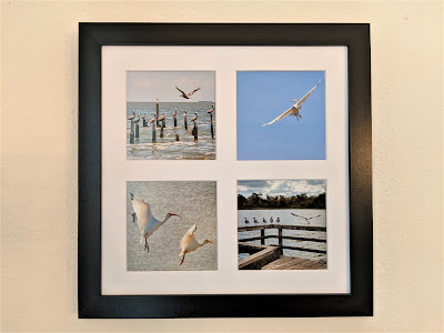 Waterbirds in Flight Tetraptych by Citysqwirl