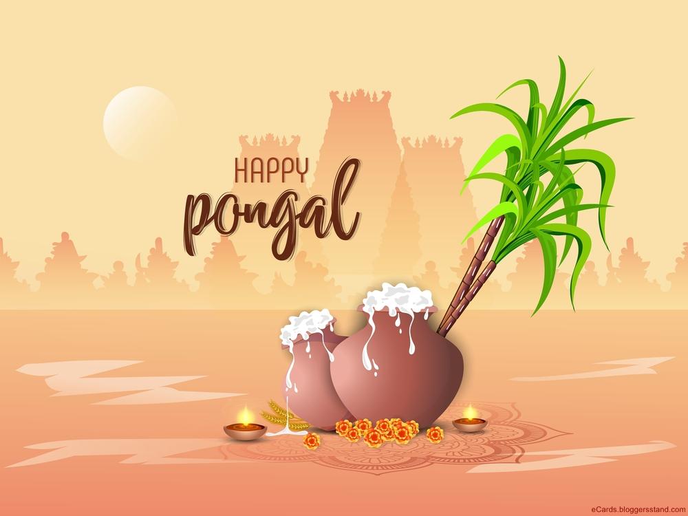 happy pongal memes 2021 messages